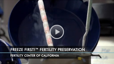 Freeze First! Fertility Preservation at FCC